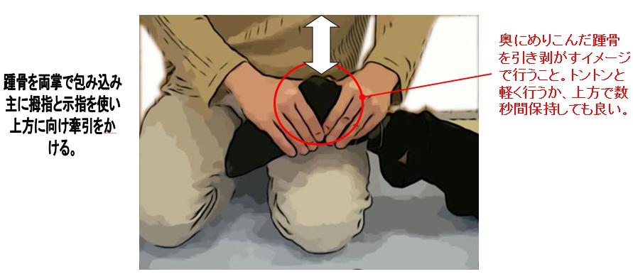 踵骨を両掌で包み込み主に拇指と示指を使い情報に向け牽引をかける。