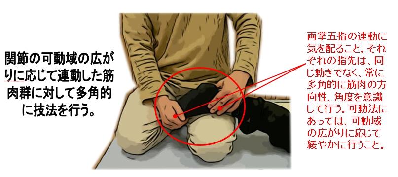 関節の可動域の広がりに応じて連動して多角的に行う。