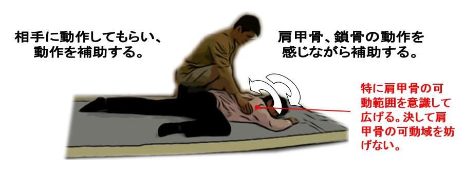 肩甲骨、鎖骨の動作を感じながら補助する。
