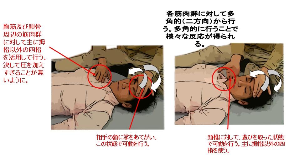 五指の可動法は胸、頚椎周辺、鎖骨周辺の筋肉群に対し、斜め方向からのアプローチをかける。