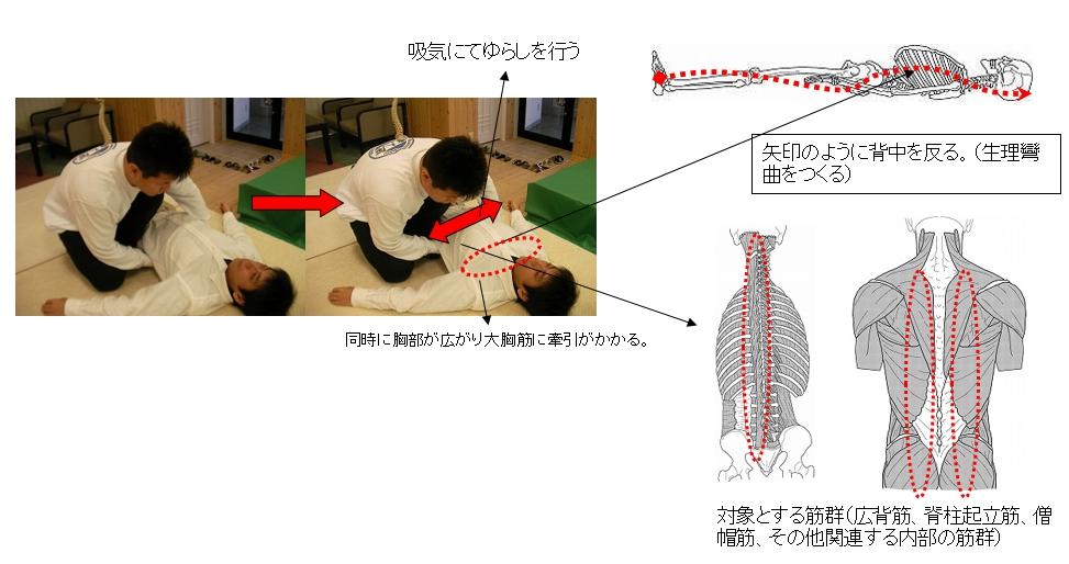 基本腰痛アプローチ法<仰臥位腰背部ゆらし動作>