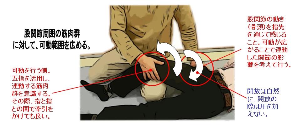 股関節についても、特に問題がなければ五指を使った可動法を行う。