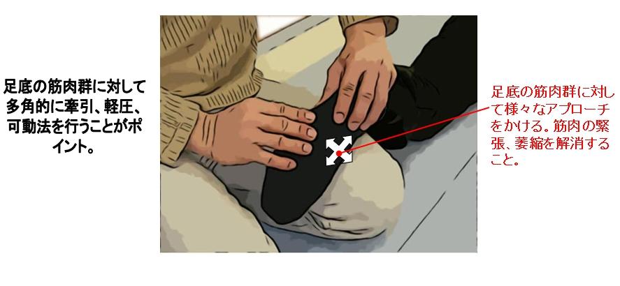 足底の筋肉群に対して多角的に牽引、軽圧、可動法を行うことがポイント。