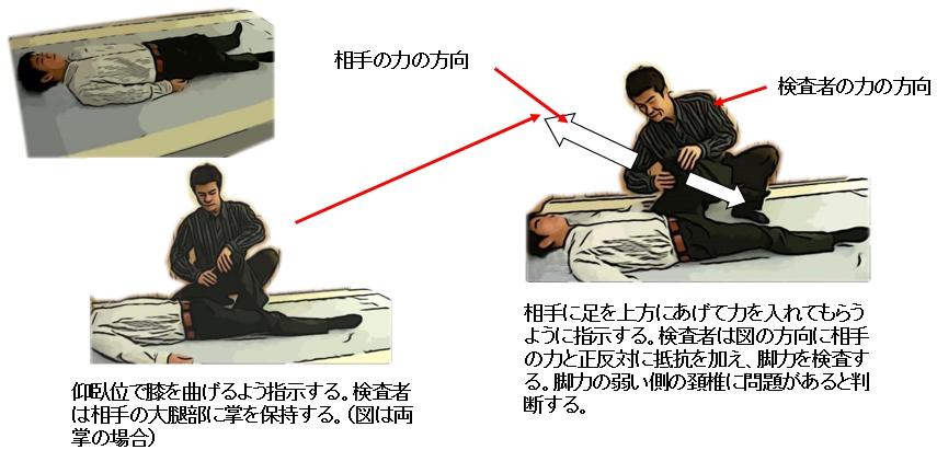 仰臥位での正常の位置での検査法