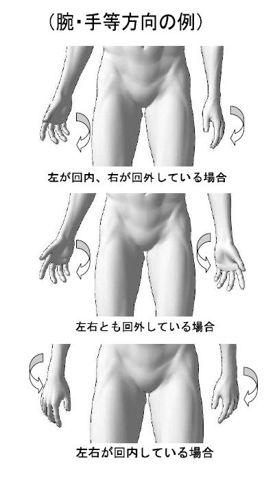 標準アプローチ法実技解説 /四十肩/五十肩