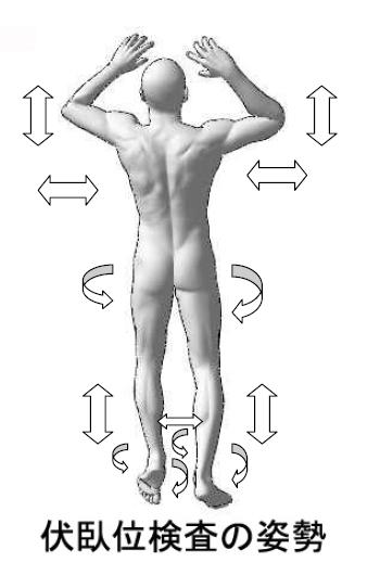 背中の痛み/背筋痛
