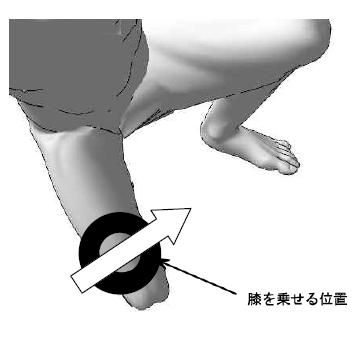 足を置き、両掌で固定し、矢印の方向に相手の足を乗 せる。