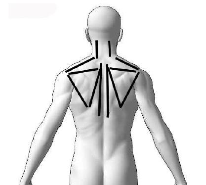 肩甲骨周辺、脊柱起立筋、頚椎周辺筋肉に対して軽圧を行う