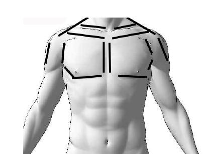 胸部周辺(黒線の部位)に対して軽圧を行う。