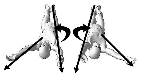 左右の上肢を使い体幹に捻りを入れる