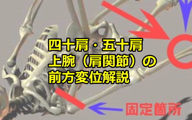 四十肩・五十肩/上腕(肩関節)の前方変位解説